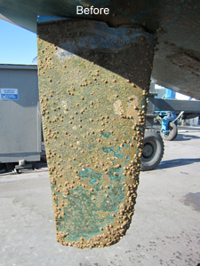 Sailboat Rudder with Heavy Marine Growth - After